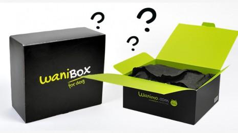 visuel-box
