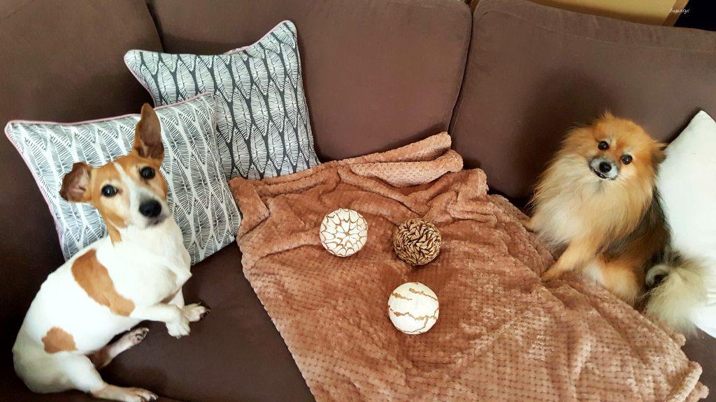 ma d co douillette blancheporte petit plus pour ambiance chaleureuse. Black Bedroom Furniture Sets. Home Design Ideas