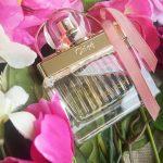 Love Story Eau Sensuelle Chloé, un parfum pour dire je t'aime