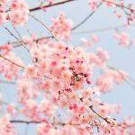 Petite liste de survie pour frileuses en attendant le printemps