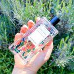 Promenade au coeur de la flore costaricienne : eau de parfum Guaria Morada Berdoues