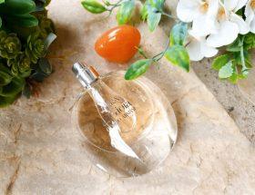 Hommage à la chaleur méditerranéenne avec le parfum Terra di Gioia Giorgio Armani