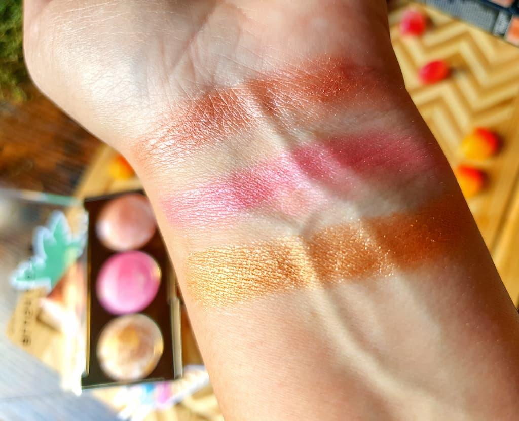 swatches palette Blush & Glow Revolution Pro