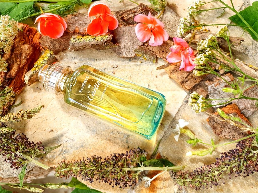 parfum aux notes aromatiques