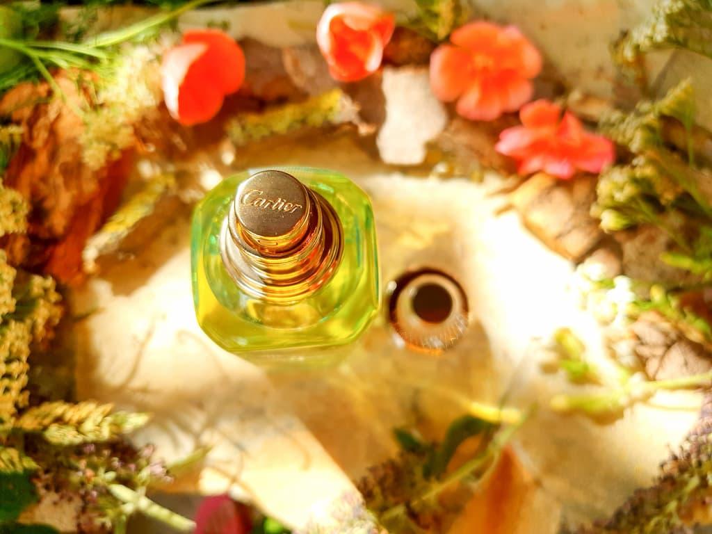 parfum frais unisexe