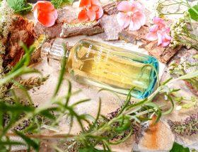 parfum unisexe frais